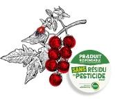 Dessin de la tomate-cerise zéro résidu de pesticide Kultive